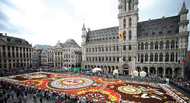 比利时展出1800平方米鲜花地毯