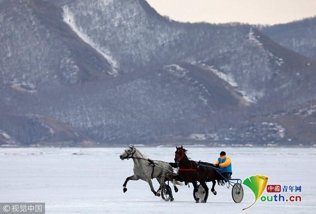 俄罗斯举办冰上赛马比赛 赛手展示高超骑术