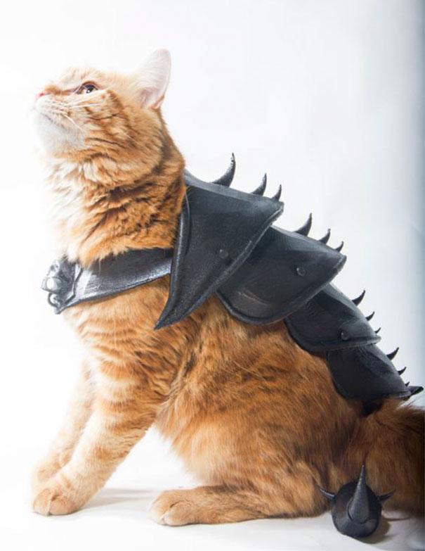 酷!创意师利用3D打印技术 为自家猫咪制作盔甲
