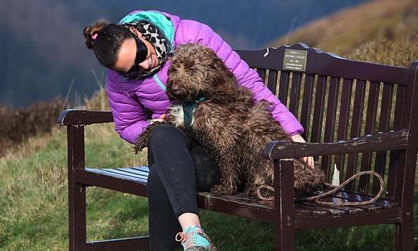 """英国一宠物犬乘滑翔机高空飞行 获""""最勇敢宠物""""提名"""