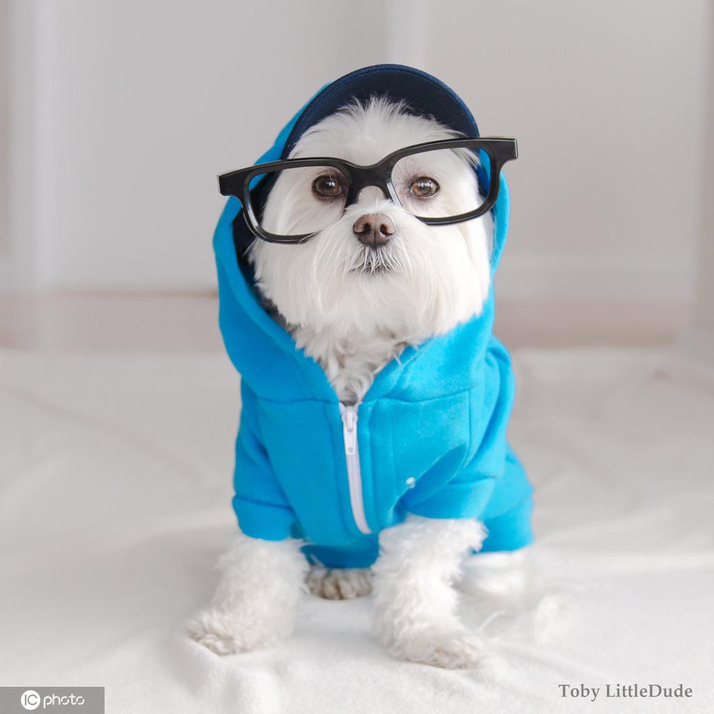 多穿衣留意保暖御寒