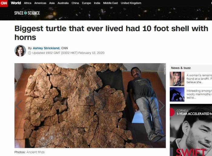 瑞士研究者发现灭绝巨型乌龟化石 龟壳长3米