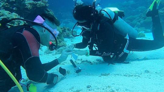 百事娱乐:男子在10米深水下浪漫求婚 将戒指系在