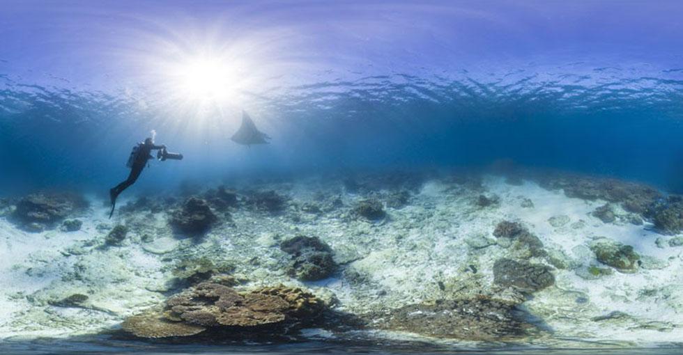 科技大事件:谷歌街景现提供海底奇观