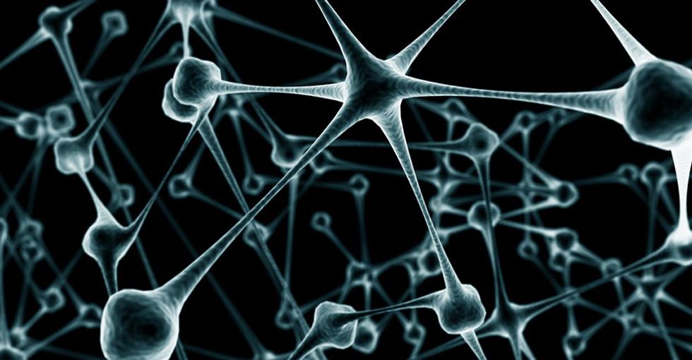 科技大事件:中美研究电子材料注入人类脑组织 人脑将操控电脑